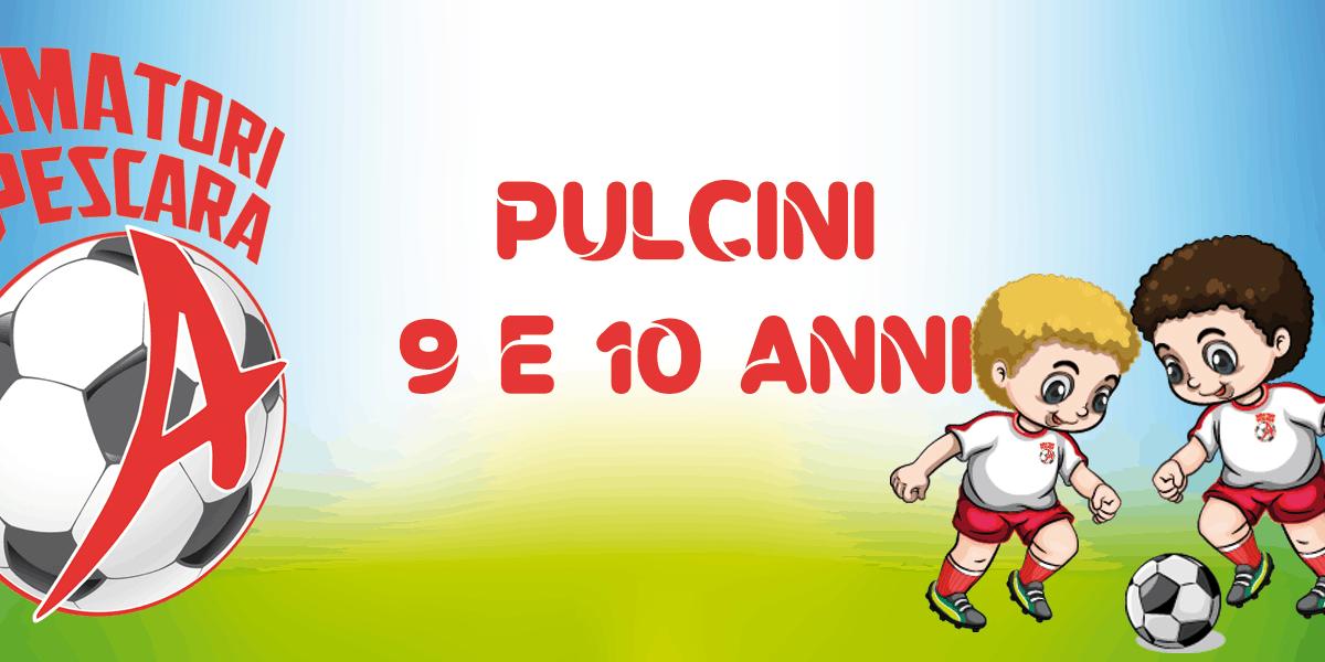 Pulcini